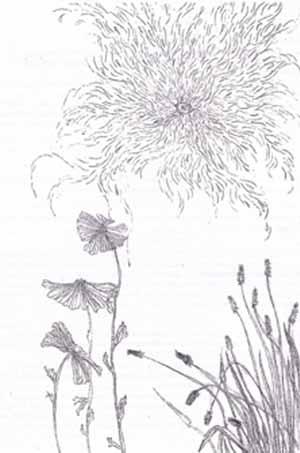 """April Sky"" hand-colored etching 1983, Margi Flint"